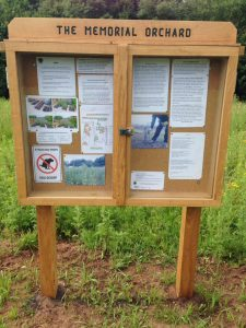 Image of oak Notice Board