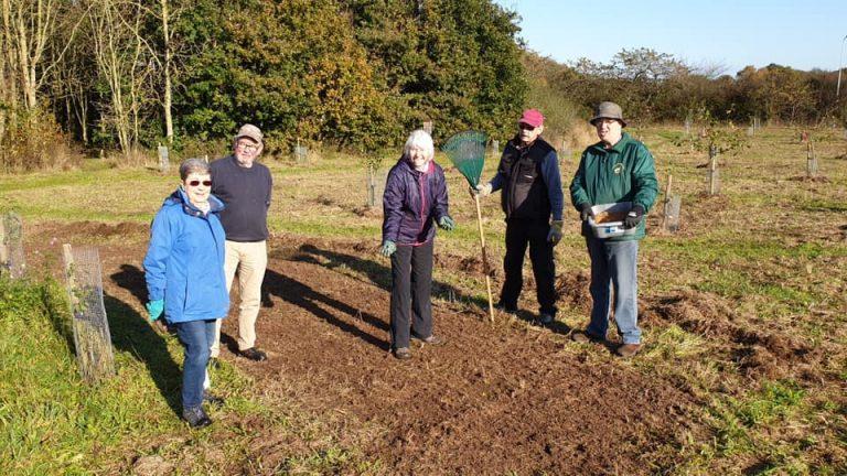 Volunteers sowing Wildflowers seeds