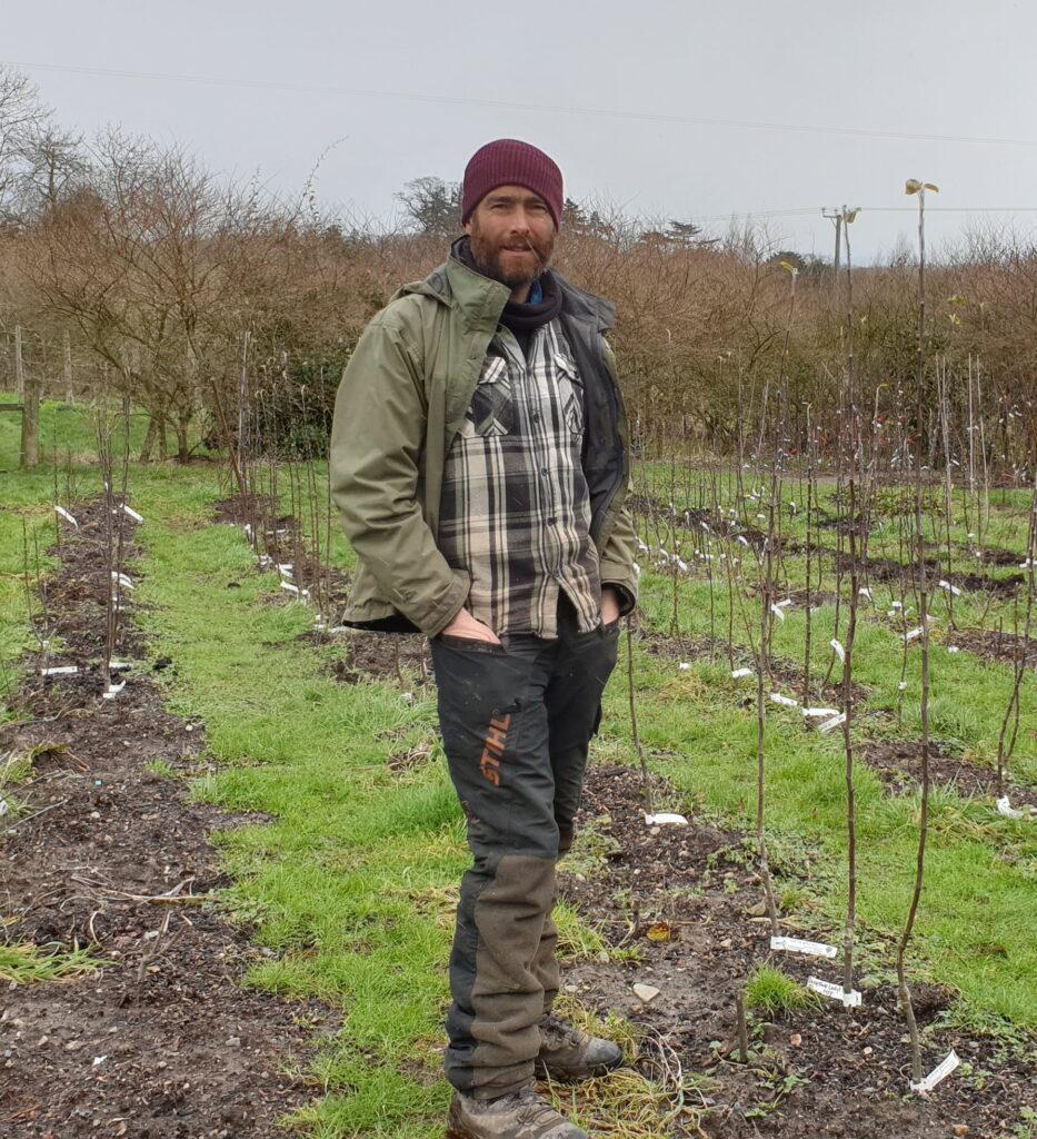 Tom standing between rows of apple saplings.